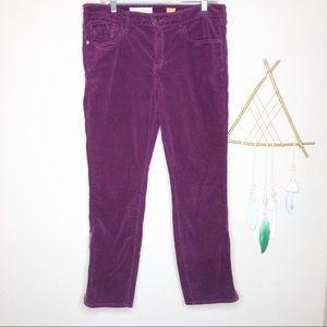 Pilcro & the Letterpress | Purple Skinny Cords